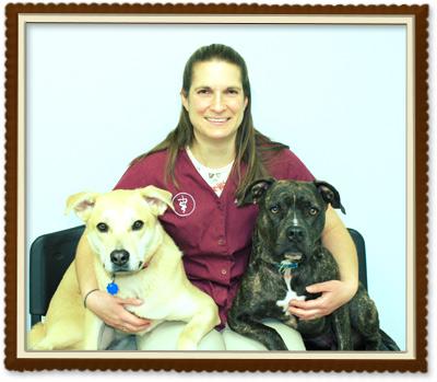 Community Involvement | Tower Hill Animal Hospital